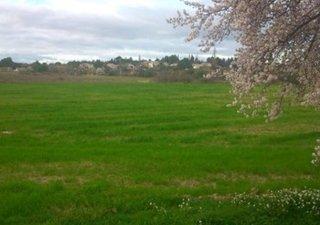 Terrain à bâtir à Tourbes (34120) Tourbes, dans joli village à 2 min de Pézenas. Maisons Balency vou [...]