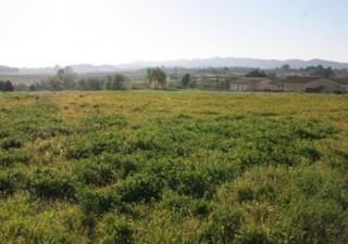 Aux portes de Carcassonne, Cavanac propose un cadre de vie rural avec toutes les commodités du quoti [...]