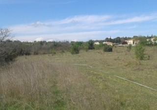 ZAC Les Plans Sur la jolie Commune de Restinclières, à seulement 30 minutes de Montpellier et de Nîm [...]