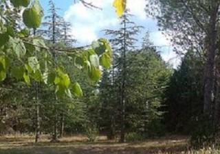 Appelez le 06.13.67.10.78Venez découvrir ce terrain idéalement situé sur la commune de Pignan