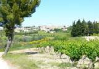 Natalia Chocano vous propose un terrain de 430 m2 à 3 minutes de Rochefort Du Gard et seulement 10 m [...]